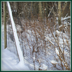 Tenax Deer And Wildlife Fence